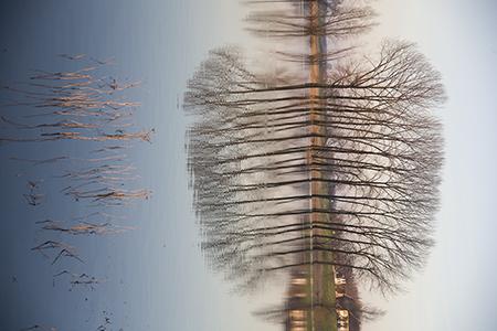 fotografie Nijmegen